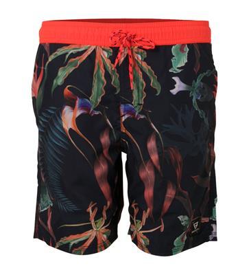 39172b035b3 bestellen onder rembours Brunotti Calloway JR Boys Shorts