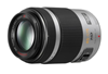 Panasonic Lumix H-PS45175E 45-175mm Zilver