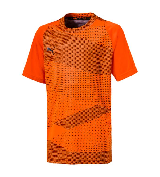 45fe5b9f6cc Puma ftblNXT Graphic Shirt Core Jr