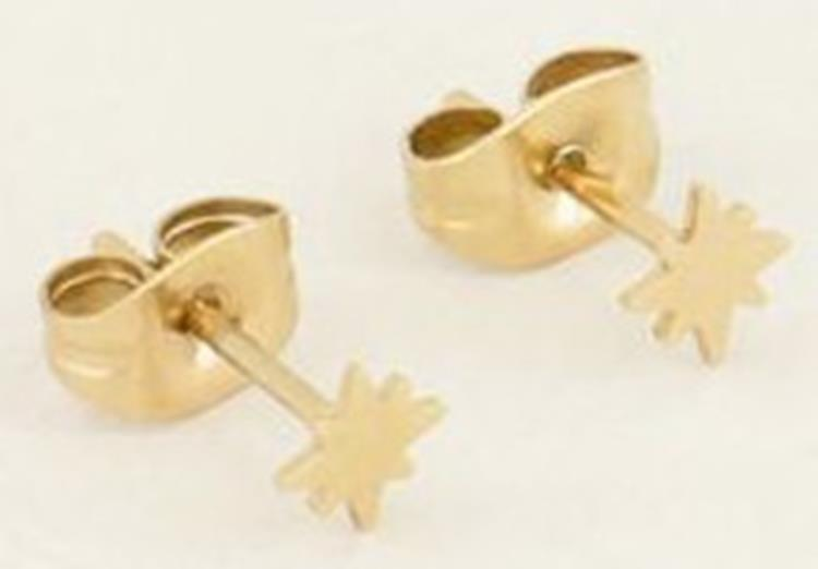 My jewellery studs poolster Goud