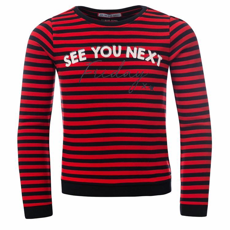 Blue Rebel - sweater - Berry - betties
