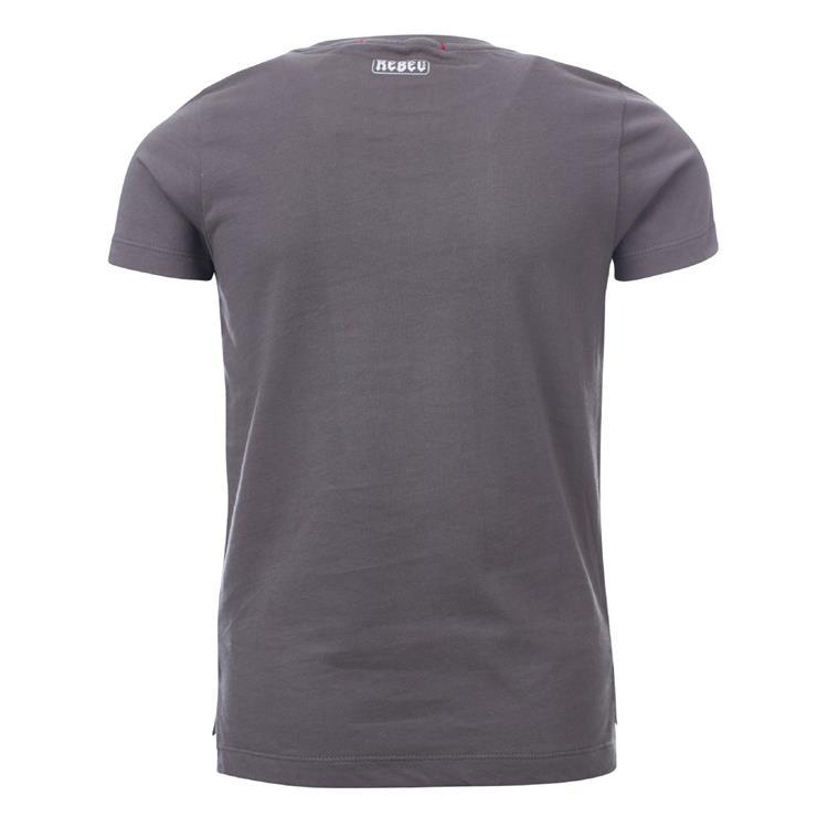 Blue Rebel SPOT ON - t-shirt ss - Smoke - dudes